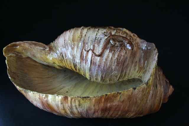 Tonna galea avec petit lézard 46x26